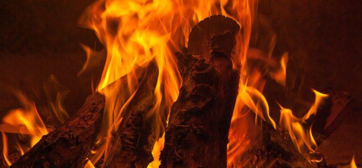 Chaudières à granulés de bois : une solution économique et écologique