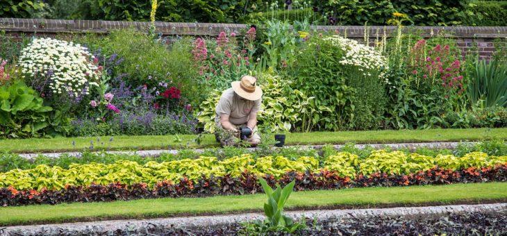 Travaux de jardinage : des conseils pour éviter les accidents