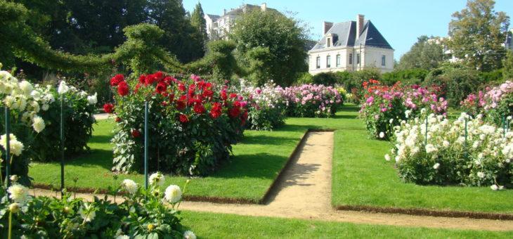 Idées d'aménagement pour votre jardin