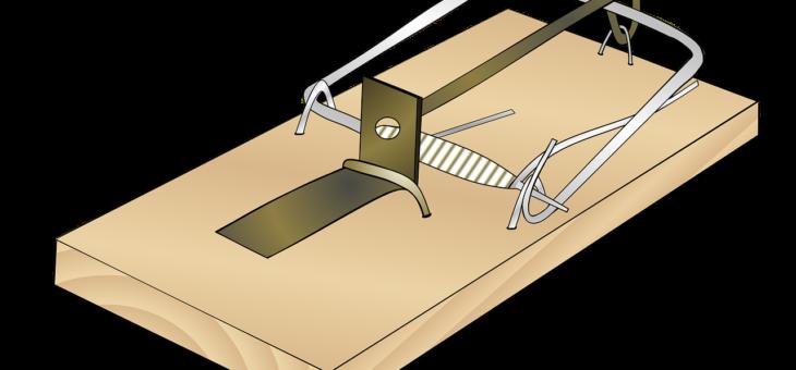 Piège à souris électrique : la solution la plus efficace contre ces rongeurs !