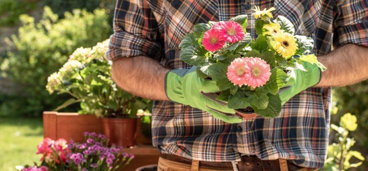 Ce qu'il faut savoir avant de jardiner