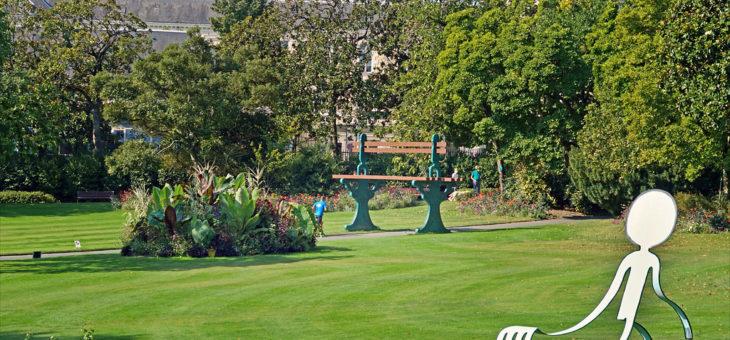 Comment créer un jardin bien organisé et bien aménagé?