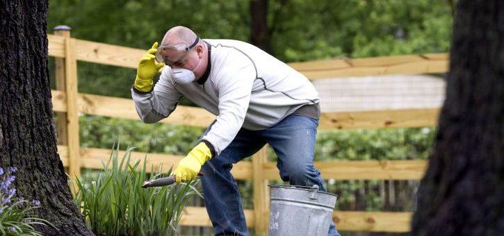 Pourquoi faire appel à un jardinier pour l'entretien de son espace vert?