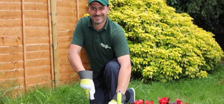 Entretien de jardin : comment faire pour préserver sa beauté au cours de l'année?